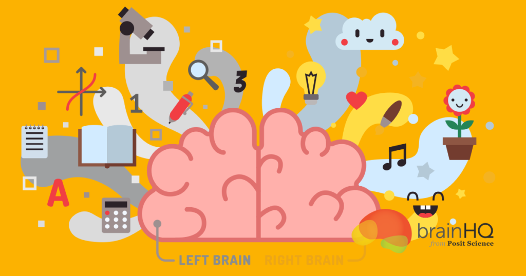 """Left Brain"" ""Right Brain"": The Mind in Two"