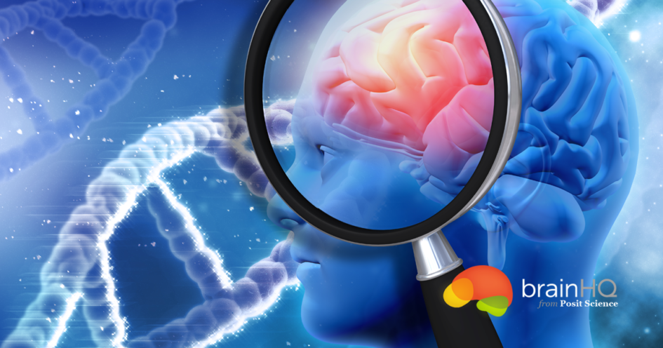 Myths About the Brain: 10 percent and Counting