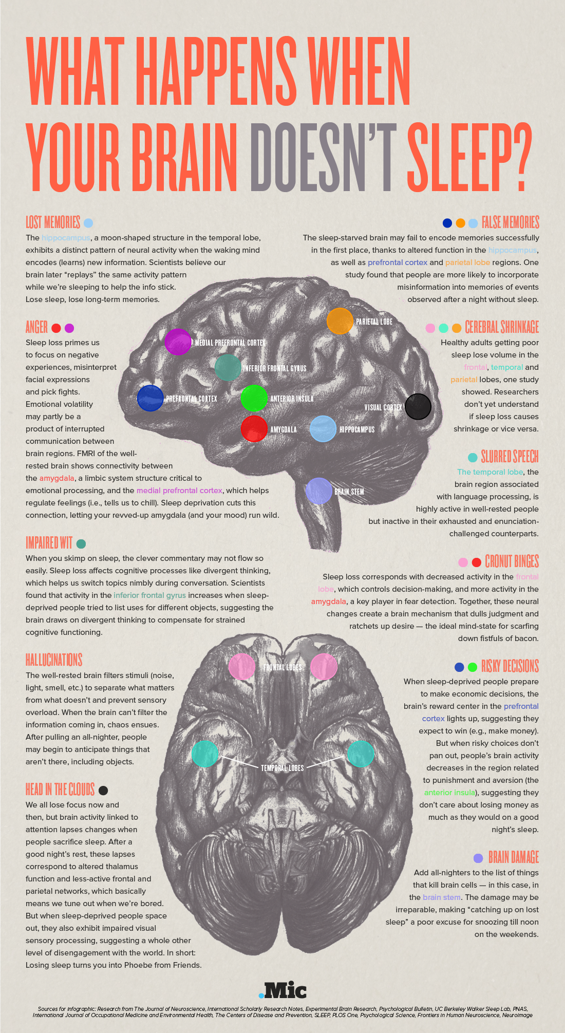 What Happens When Your Brain Doesnt Sleep Brain Connection